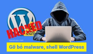 Malware shell Wordpress